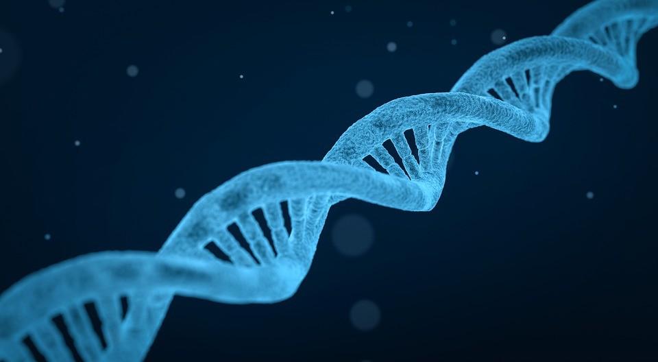 Mal de Parkinson é hereditário?