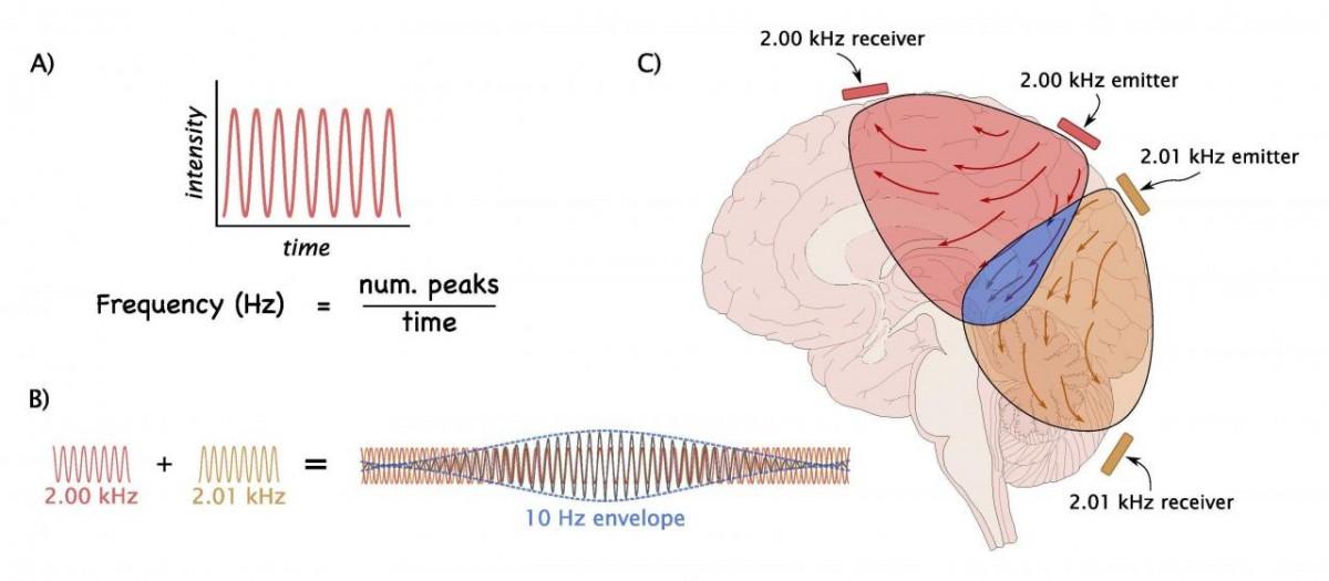 Estimulação Cerebral Remota: Um novo Tratamento para a Doença de Parkinson?